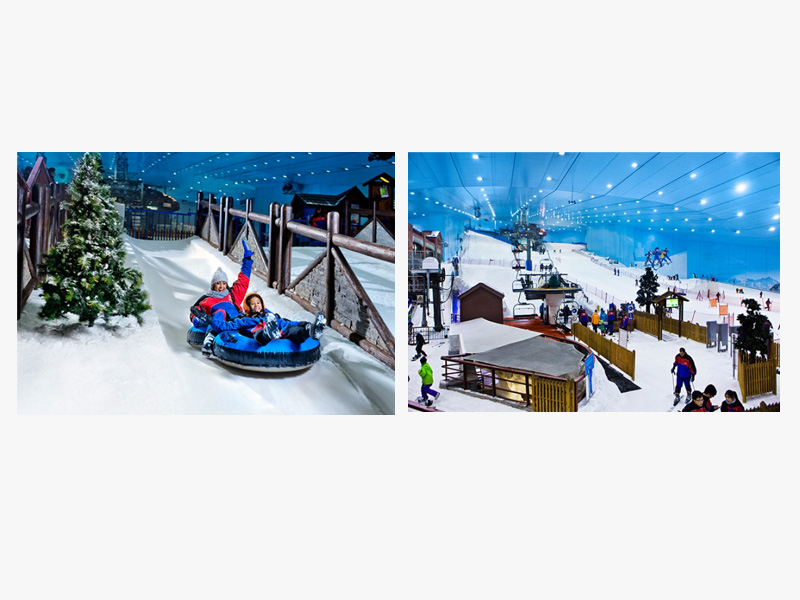 Ski Dubai and Ski Egypt are fun for the whole family